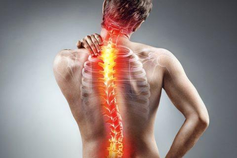 Ortopedia rachide vertebrale e scogliosi